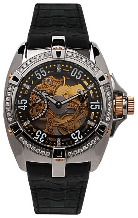 Wrist watch Aqua Master for Men - picture, image, photo