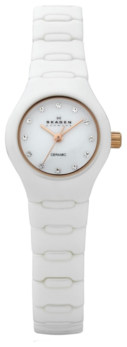 Skagen 816XSWXRC1 wrist watches for women - 1 photo, picture, image