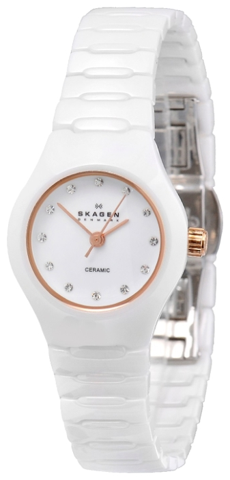 Skagen 816XSWXRC1 wrist watches for women - 2 photo, picture, image