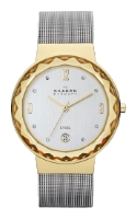Skagen SKW2002 wrist watches for women - 1 image, photo, picture
