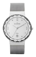 Skagen SKW2004 wrist watches for women - 1 picture, photo, image