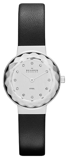 Skagen SKW2005 wrist watches for women - 1 photo, image, picture
