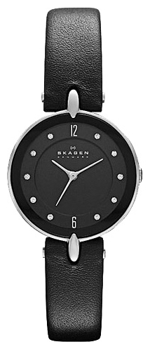 Skagen SKW2011 wrist watches for women - 1 image, picture, photo
