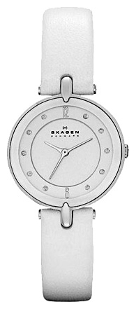 Skagen SKW2012 wrist watches for women - 1 image, photo, picture