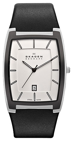 Skagen SKW6003 wrist watches for men - 1 photo, image, picture