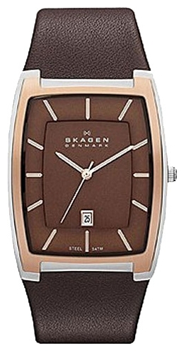 Skagen SKW6004 wrist watches for men - 1 image, photo, picture